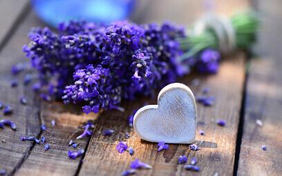 Bouquet-lavande