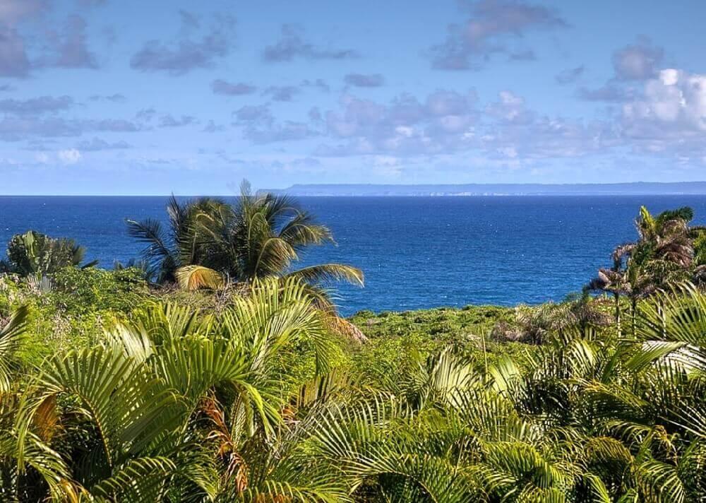 Jardin Antille vue océan LA1
