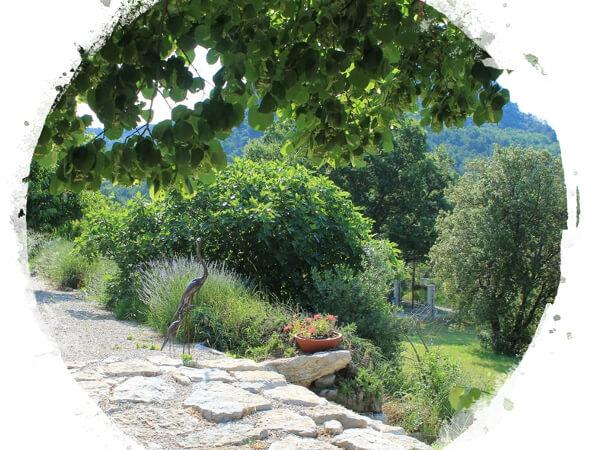 Pure Detox - Claps - Jardin et scultures