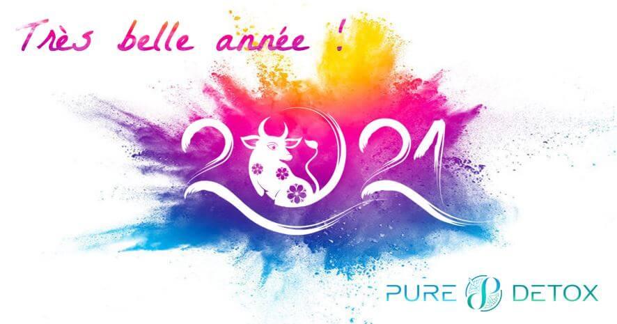 Bannière Meilleurs Vœux 2021 - PURE DETOX